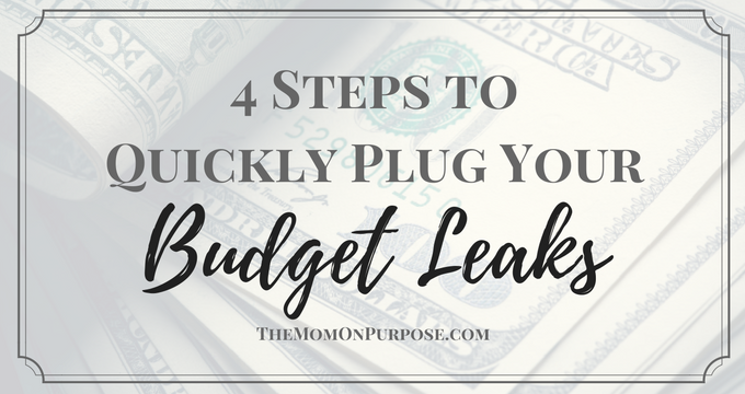 4 Steps to Quickly Plug Your Budget Leaks Fast!